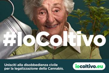 #IOCOLTIVO