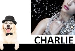 www.charliefashion-shop.it