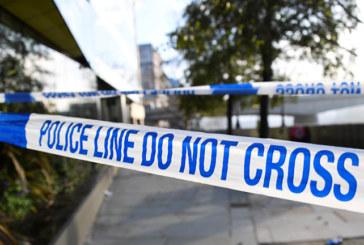 LONDRA TERRORISMO A READING